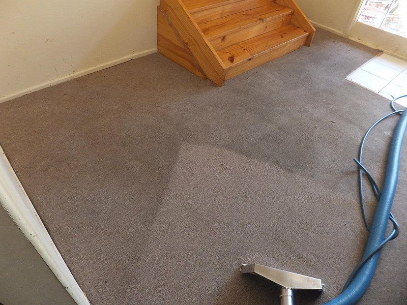 carpet-steam-cleaning-results-5