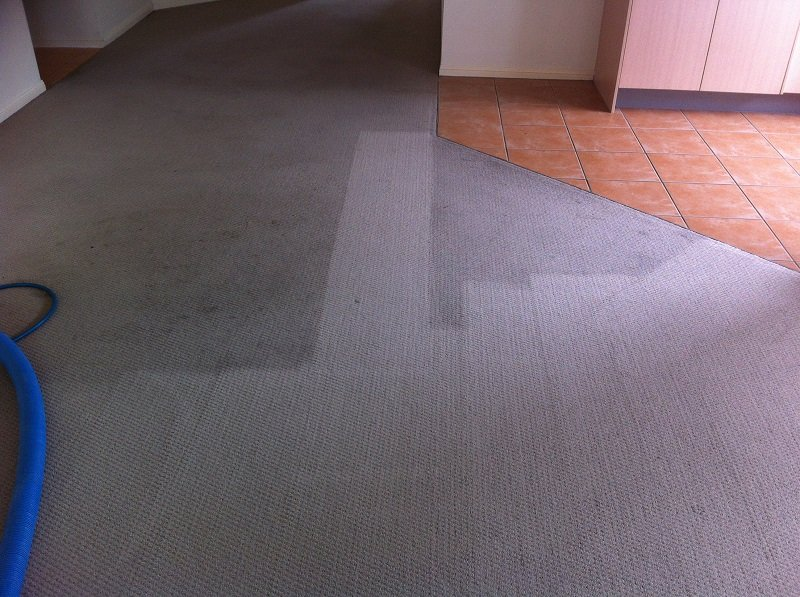 carpet-steam-cleaning-results-7