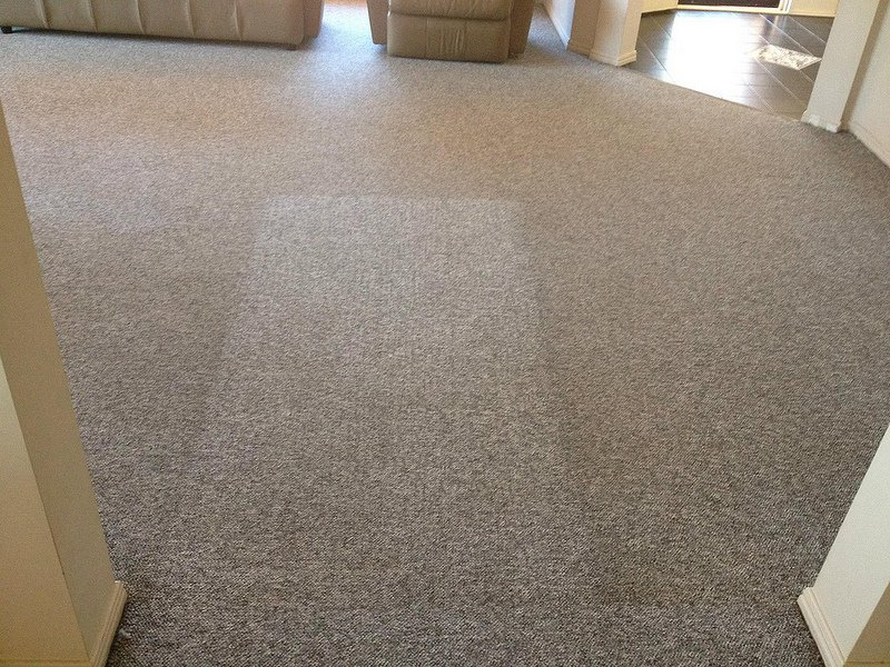 carpet steam cleaning results 2