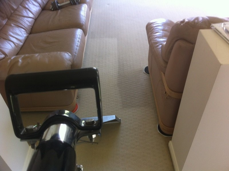 carpet steam cleaning results 8