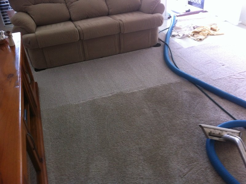 carpet steam cleaning results 9